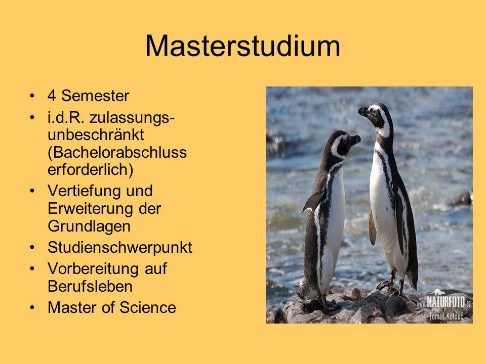 Masterstudium 4 Semester i.d.R. zulassungs- unbeschränkt (Bachelorabschluss erforderlich) Vertiefung und Erweiterung der Grundlagen Studienschwerpunkt