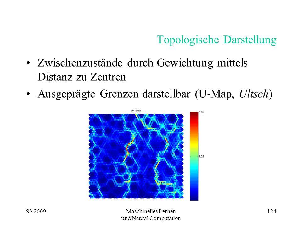 SS 2009Maschinelles Lernen und Neural Computation 124 Topologische Darstellung Zwischenzustände durch Gewichtung mittels Distanz zu Zentren Ausgeprägte Grenzen darstellbar (U-Map, Ultsch)