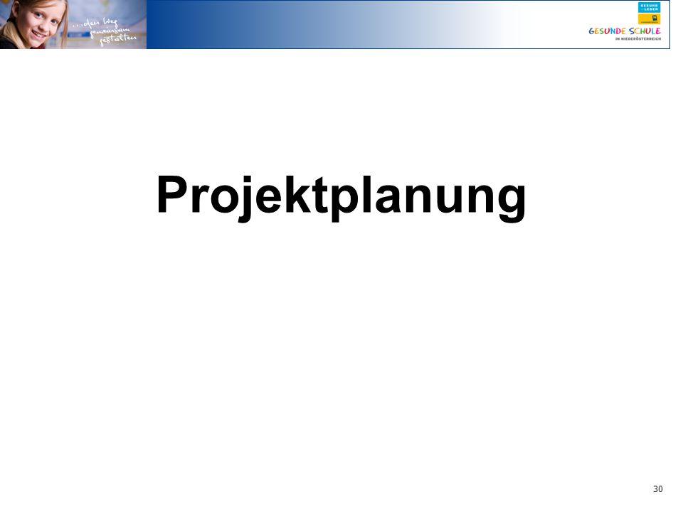 30 Projektplanung