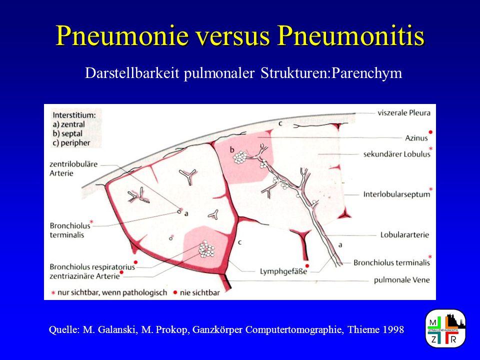 Pneumonie versus Pneumonitis Darstellbarkeit pulmonaler Strukturen:Parenchym Quelle: M. Galanski, M. Prokop, Ganzkörper Computertomographie, Thieme 19