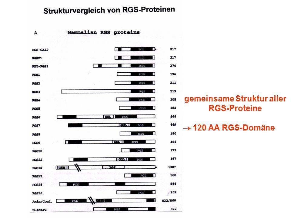 gemeinsame Struktur aller RGS-Proteine  120 AA RGS-Domäne