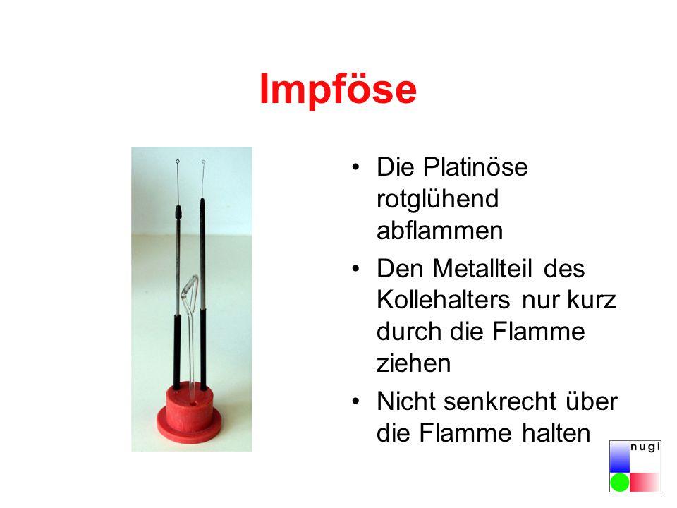 Impföse Die Platinöse rotglühend abflammen Den Metallteil des Kollehalters nur kurz durch die Flamme ziehen Nicht senkrecht über die Flamme halten
