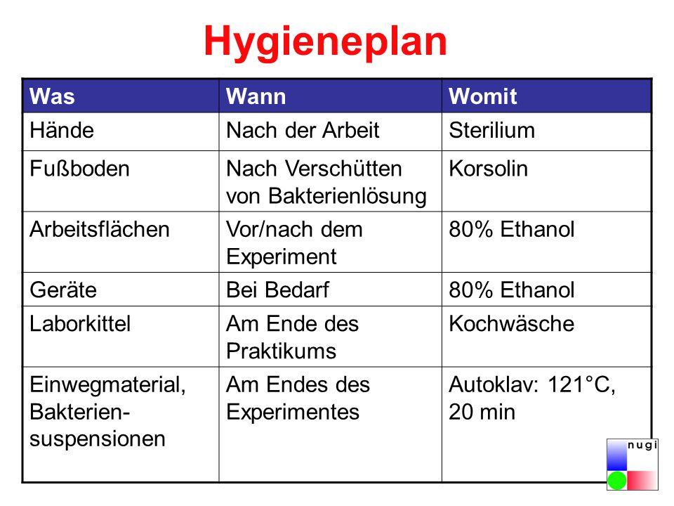 Hygieneplan WasWannWomit HändeNach der ArbeitSterilium FußbodenNach Verschütten von Bakterienlösung Korsolin ArbeitsflächenVor/nach dem Experiment 80%