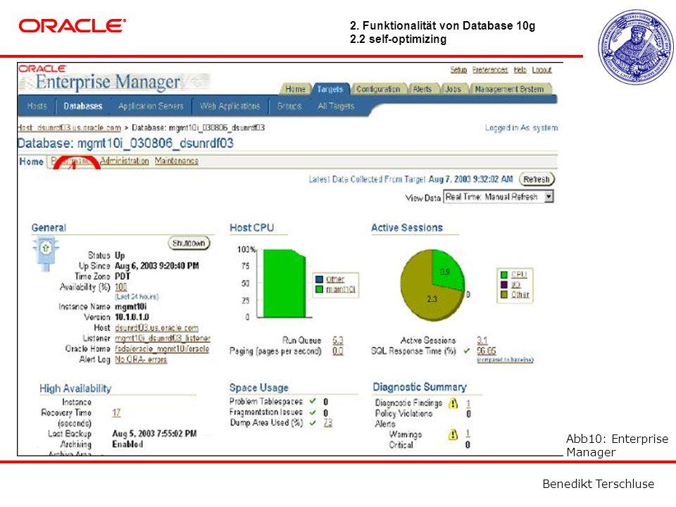 Benedikt Terschluse Abb10: Enterprise Manager 2.