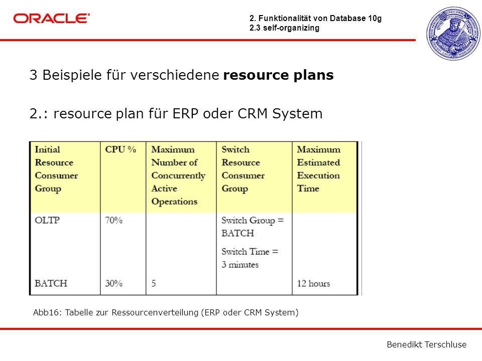 Benedikt Terschluse 3 Beispiele für verschiedene resource plans 2.: resource plan für ERP oder CRM System Abb16: Tabelle zur Ressourcenverteilung (ERP oder CRM System) 2.