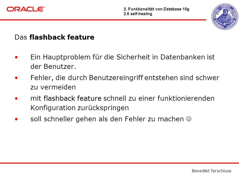 Benedikt Terschluse flashback feature Das flashback feature Ein Hauptproblem für die Sicherheit in Datenbanken ist der Benutzer.