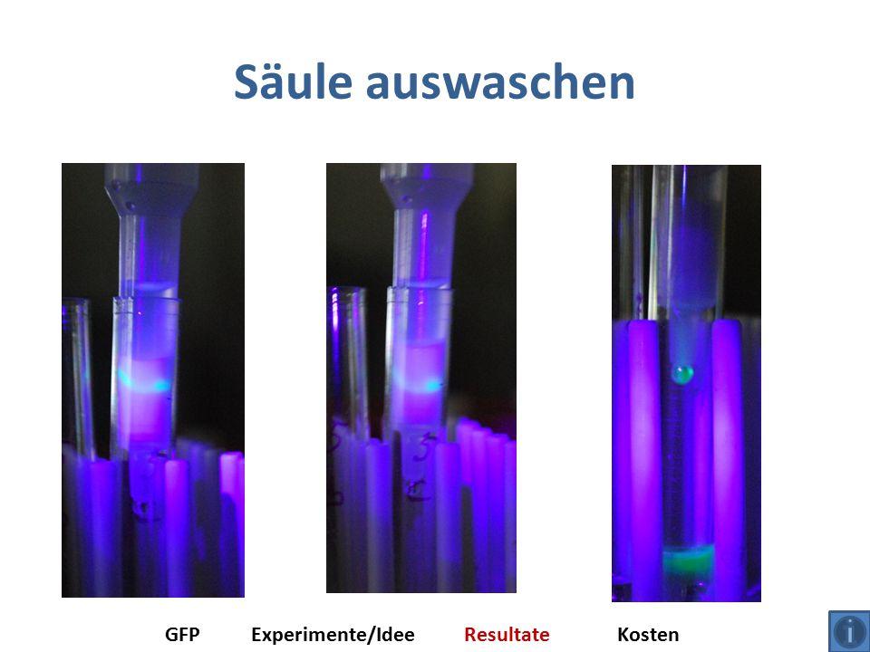 Säule auswaschen GFPExperimente/IdeeResultateKosten