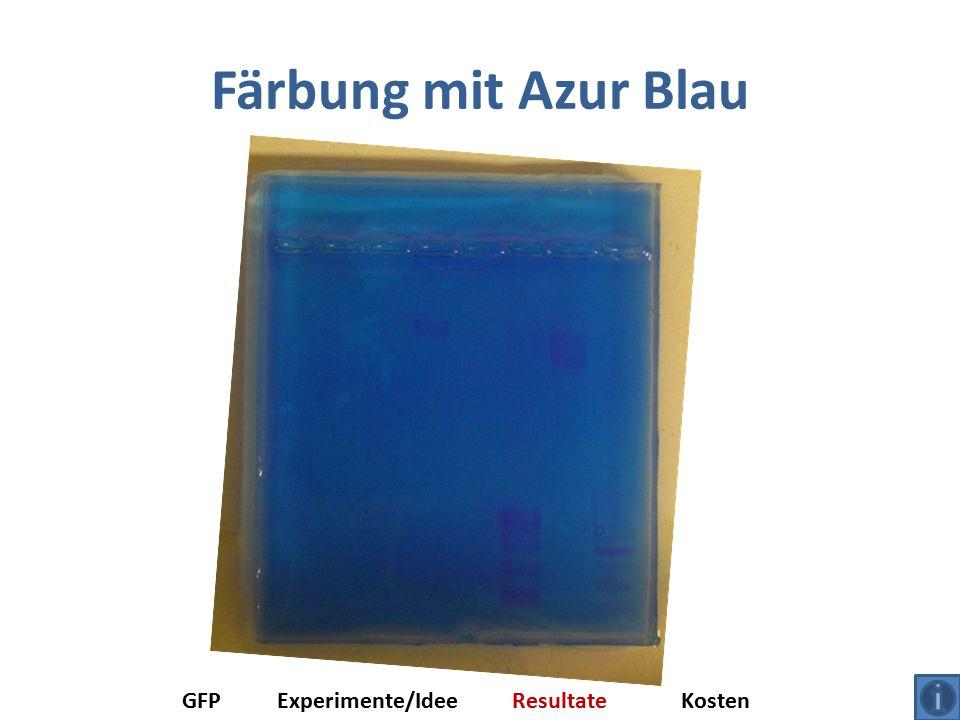 Färbung mit Azur Blau GFPExperimente/IdeeResultateKosten
