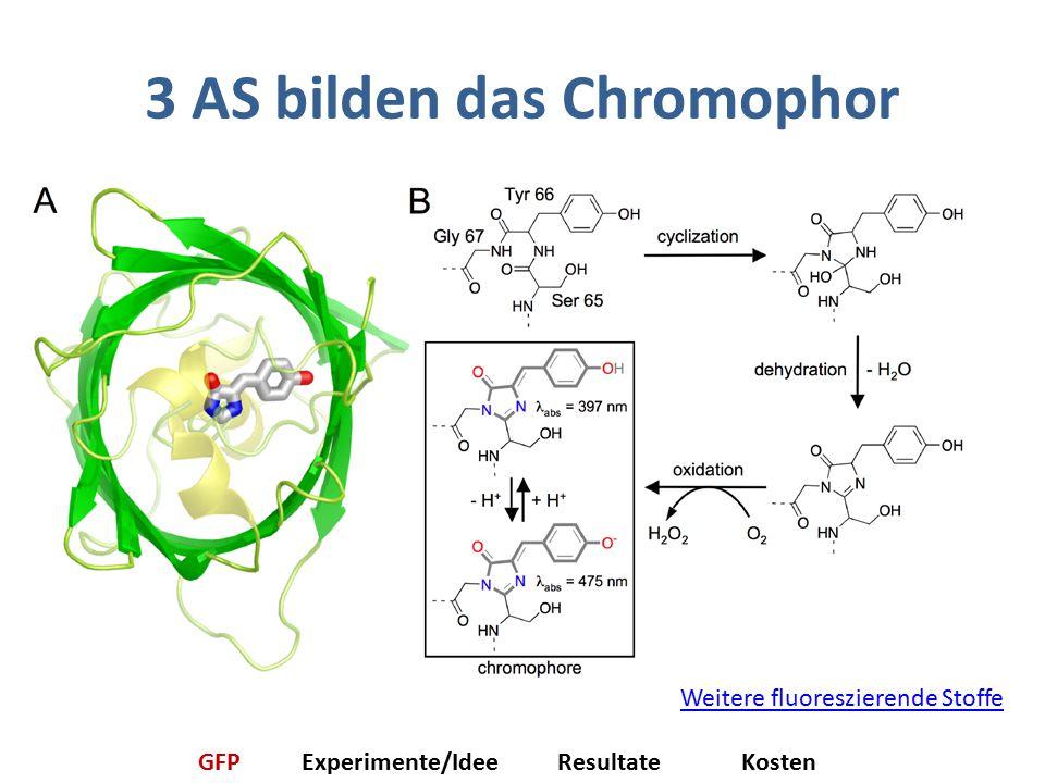 3 AS bilden das Chromophor Weitere fluoreszierende Stoffe GFPExperimente/IdeeResultateKosten