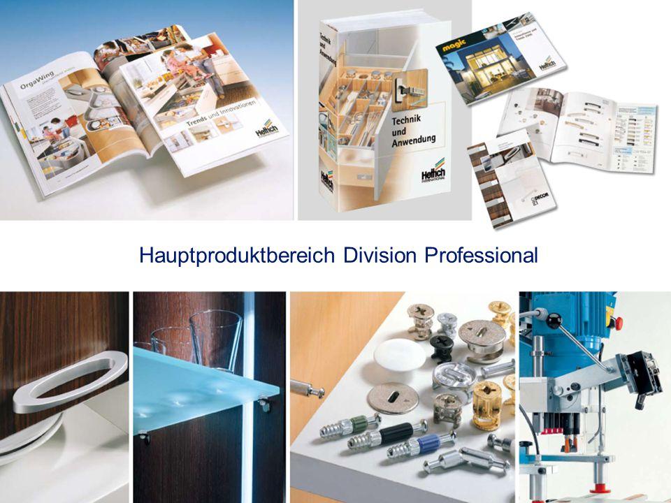 Hauptproduktbereich Division Professional