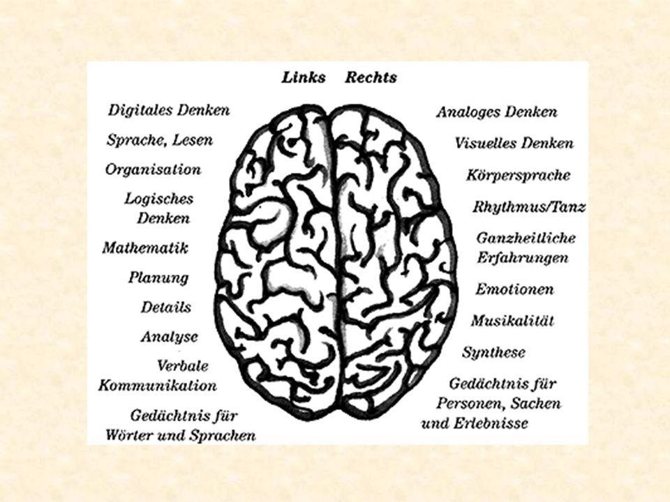 Symptome der OSAS Tag Symptome Müdigkeit Kopfschmerzen Konzentrationsschwäche Müdigkeit Impotenz Sodbrennen Nacht Symptome Schnarchen Unruhe Schwitzen Polyurie Sodbrennen