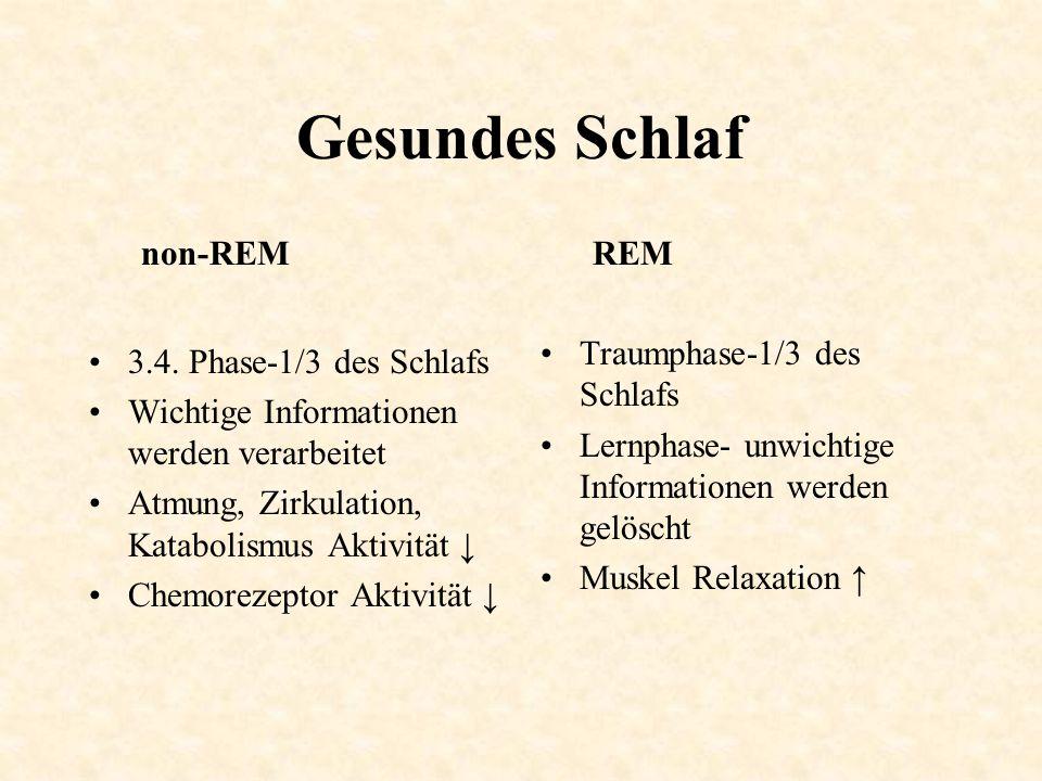 Gesundes Schlaf non-REM 3.4. Phase-1/3 des Schlafs Wichtige Informationen werden verarbeitet Atmung, Zirkulation, Katabolismus Aktivität ↓ Chemorezept