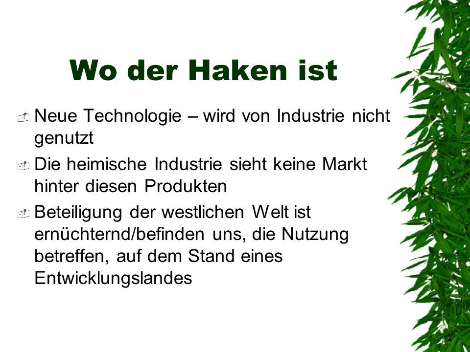 Wo der Haken ist  Neue Technologie – wird von Industrie nicht genutzt  Die heimische Industrie sieht keine Markt hinter diesen Produkten  Beteiligung der westlichen Welt ist ernüchternd/befinden uns, die Nutzung betreffen, auf dem Stand eines Entwicklungslandes