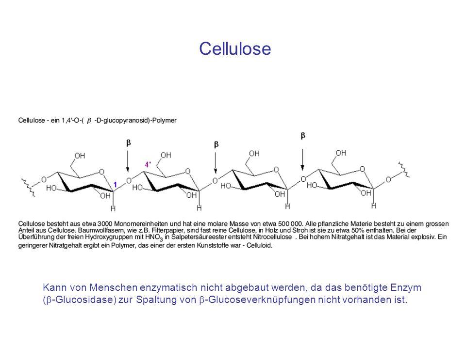 Cellulose Kann von Menschen enzymatisch nicht abgebaut werden, da das benötigte Enzym (  -Glucosidase) zur Spaltung von  -Glucoseverknüpfungen nicht vorhanden ist.