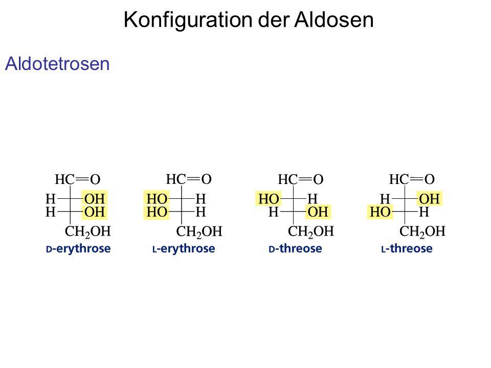 Konfiguration der Aldosen Aldotetrosen