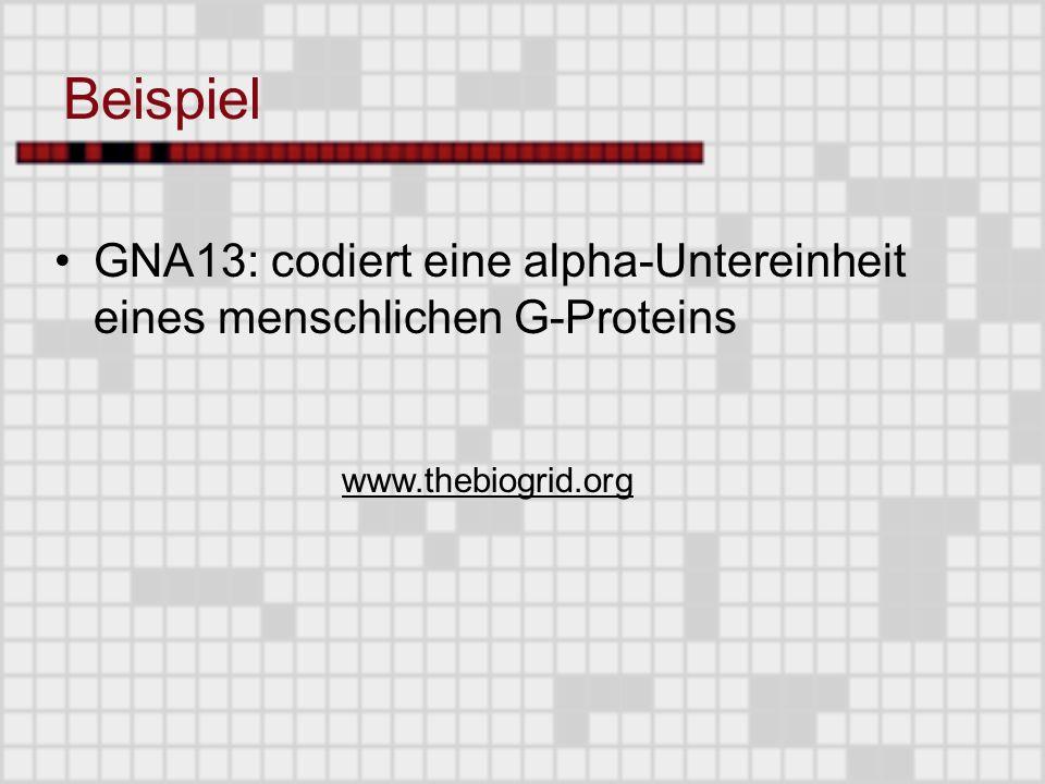 Beispiel GNA13: codiert eine alpha-Untereinheit eines menschlichen G-Proteins www.thebiogrid.org