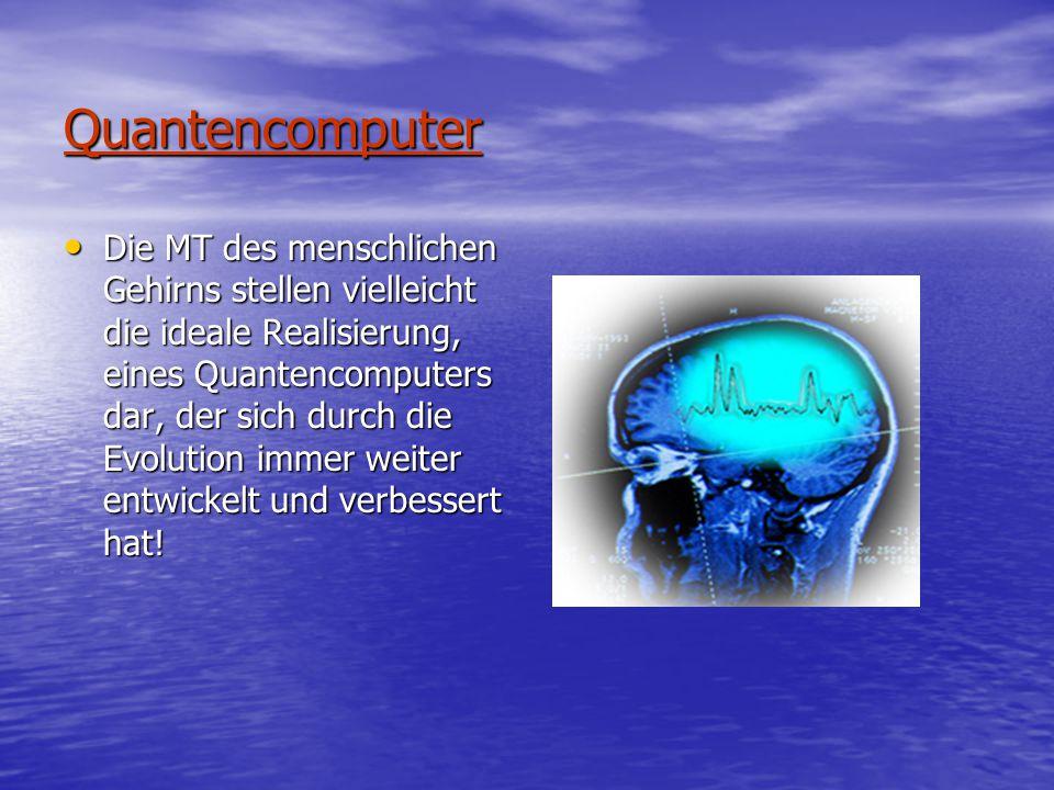 Quantencomputer Die MT des menschlichen Gehirns stellen vielleicht die ideale Realisierung, eines Quantencomputers dar, der sich durch die Evolution immer weiter entwickelt und verbessert hat.
