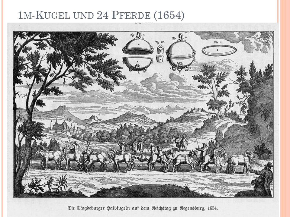 1 M -K UGEL UND 24 P FERDE (1654)
