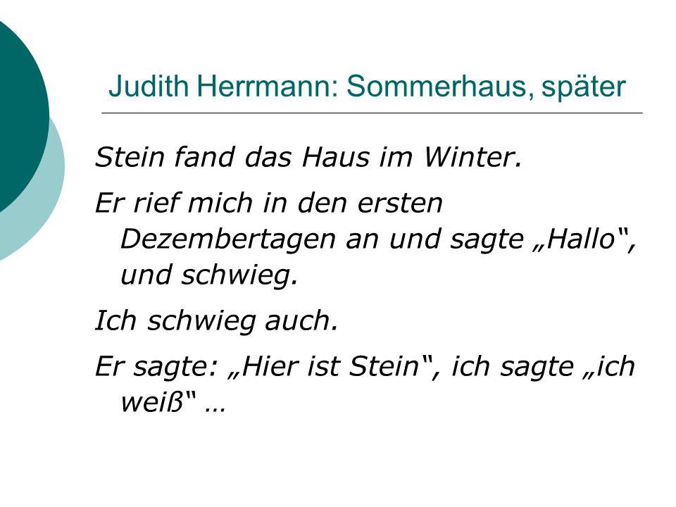 """Judith Herrmann: Sommerhaus, später Stein fand das Haus im Winter. Er rief mich in den ersten Dezembertagen an und sagte """"Hallo"""", und schwieg. Ich sch"""