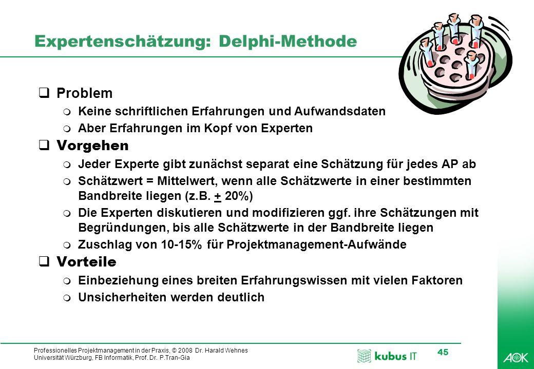 kubus IT Professionelles Projektmanagement in der Praxis, © 2008 Dr. Harald Wehnes Universität Würzburg, FB Informatik, Prof. Dr. P.Tran-Gia 45 Expert