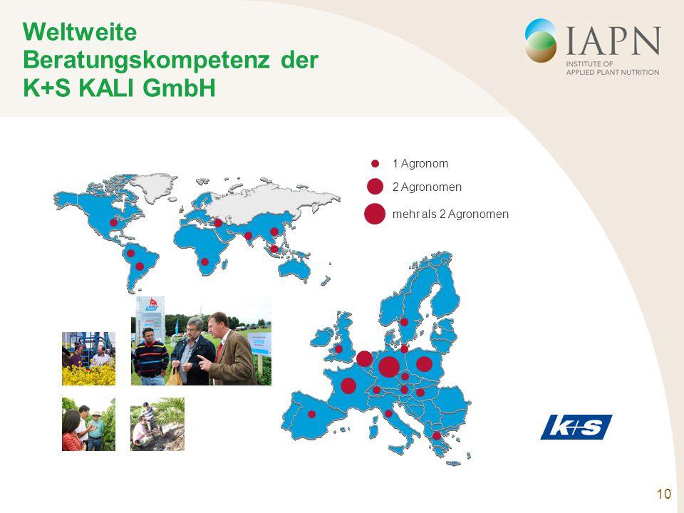 10 Weltweite Beratungskompetenz der K+S KALI GmbH 1 Agronom 2 Agronomen mehr als 2 Agronomen