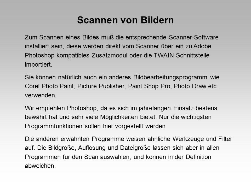 Arbeitsoberfläche Adobe Photoshop 5.5 Menüleiste Werkzeuge Bild-Titelleiste Arbeits- bereich Statusleiste EbenenfensterWerkzeugspitzenfenstergescanntes Bild