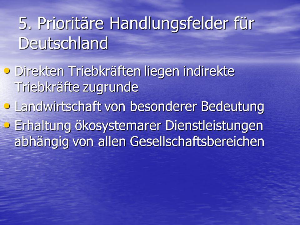5. Prioritäre Handlungsfelder für Deutschland Direkten Triebkräften liegen indirekte Triebkräfte zugrunde Direkten Triebkräften liegen indirekte Trieb