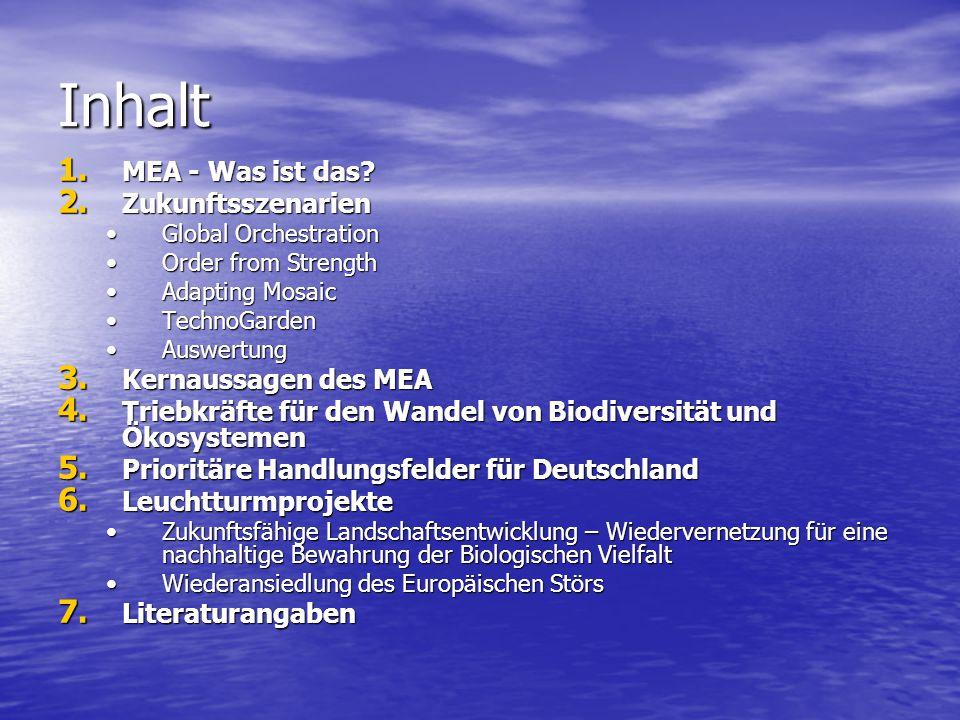 Inhalt 1. MEA - Was ist das? 2. Zukunftsszenarien Global OrchestrationGlobal Orchestration Order from StrengthOrder from Strength Adapting MosaicAdapt