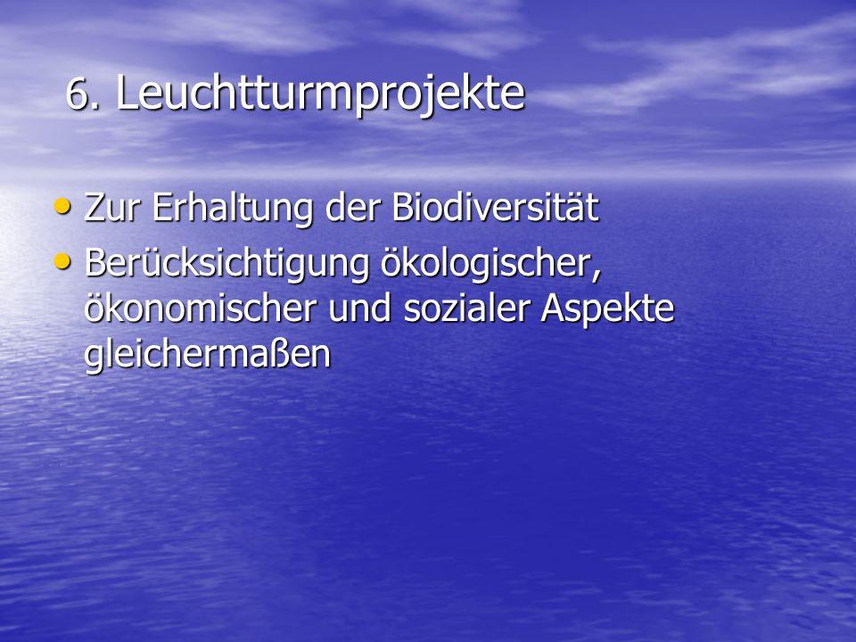 6. Leuchtturmprojekte 6. Leuchtturmprojekte Zur Erhaltung der Biodiversität Zur Erhaltung der Biodiversität Berücksichtigung ökologischer, ökonomische