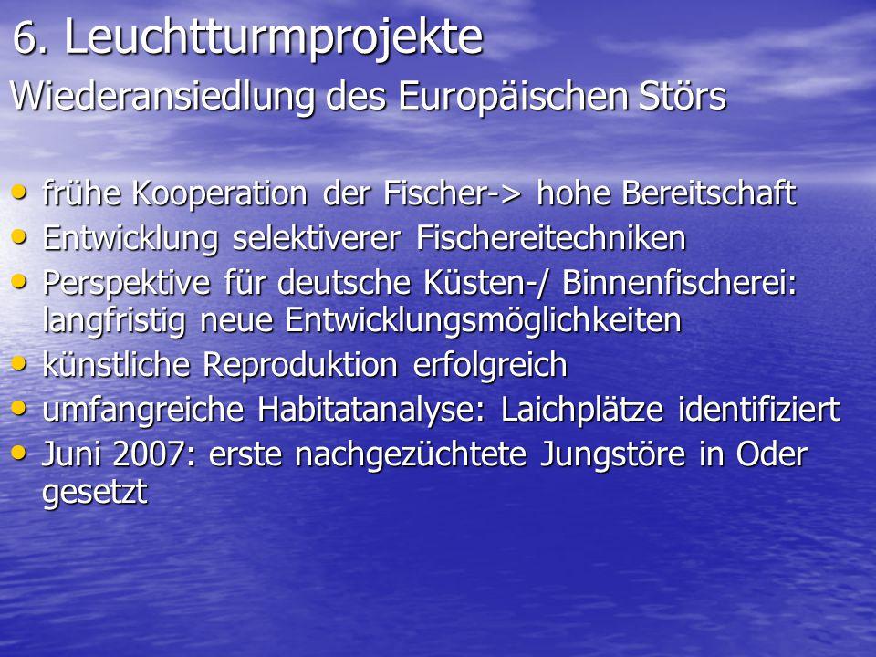 6. Leuchtturmprojekte 6. Leuchtturmprojekte frühe Kooperation der Fischer-> hohe Bereitschaft frühe Kooperation der Fischer-> hohe Bereitschaft Entwic