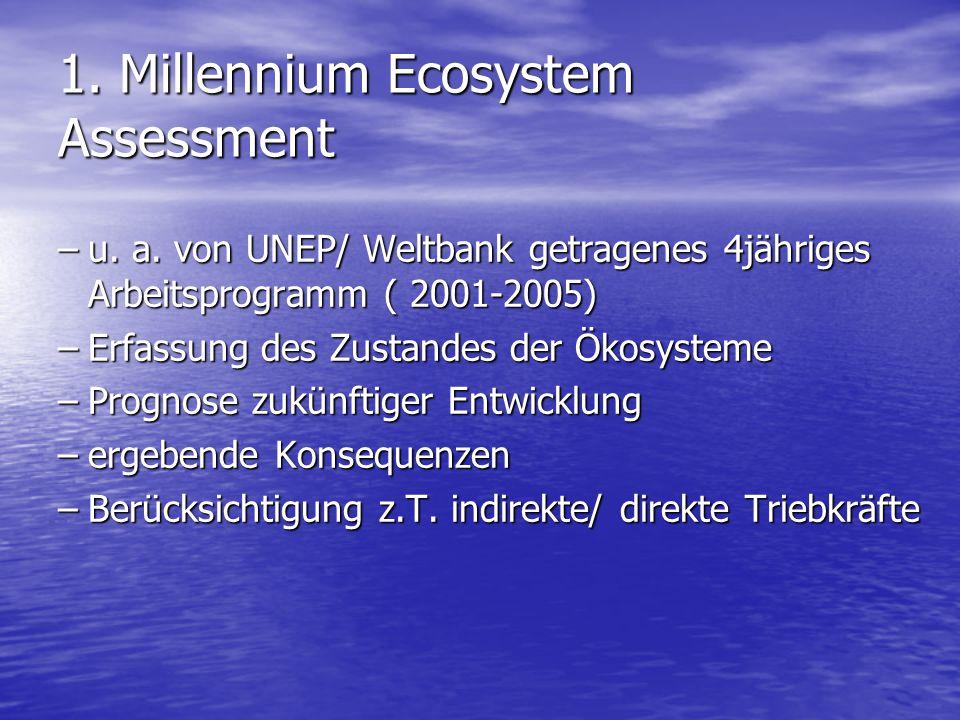 1. Millennium Ecosystem Assessment –u. a. von UNEP/ Weltbank getragenes 4jähriges Arbeitsprogramm ( 2001-2005) –Erfassung des Zustandes der Ökosysteme