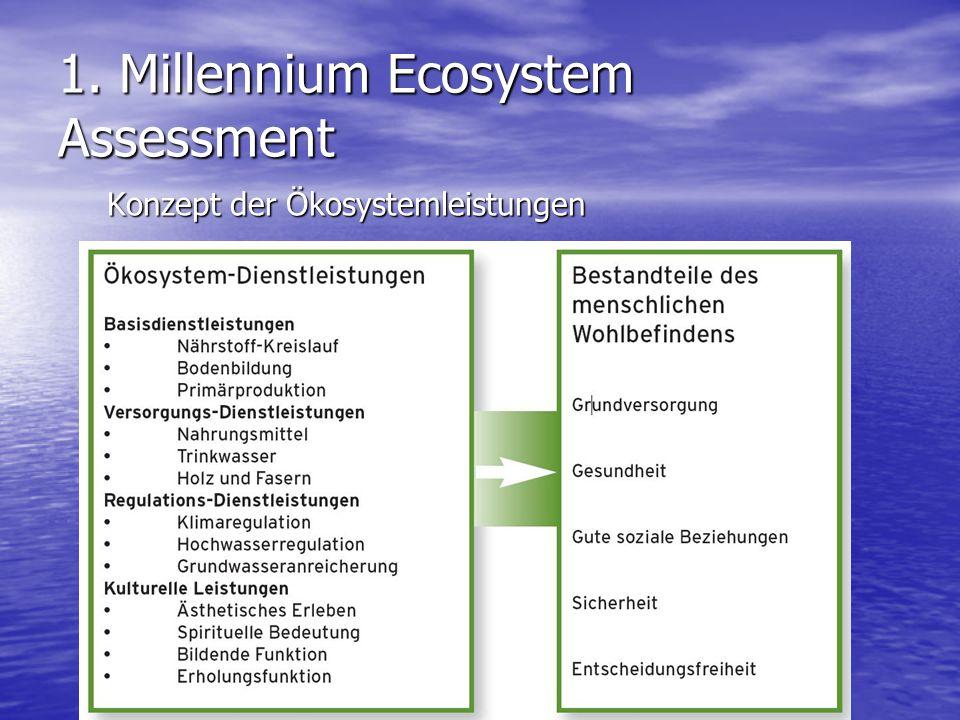 1. Millennium Ecosystem Assessment Konzept der Ökosystemleistungen