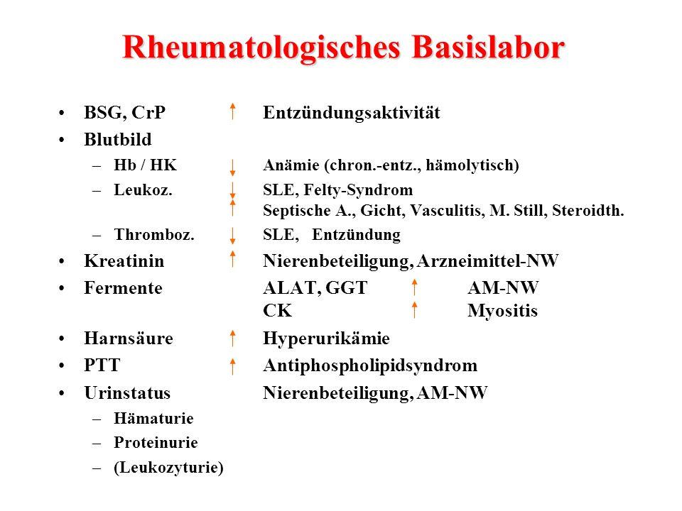 BSG, CrPEntzündungsaktivität Blutbild –Hb / HKAnämie (chron.-entz., hämolytisch) –Leukoz.SLE, Felty-Syndrom Septische A., Gicht, Vasculitis, M. Still,