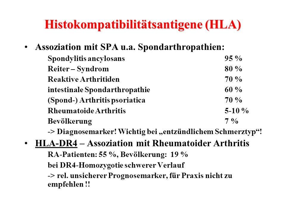 Histokompatibilitätsantigene (HLA) Assoziation mit SPA u.a. Spondarthropathien: Spondylitis ancylosans95 % Reiter – Syndrom80 % Reaktive Arthritiden70