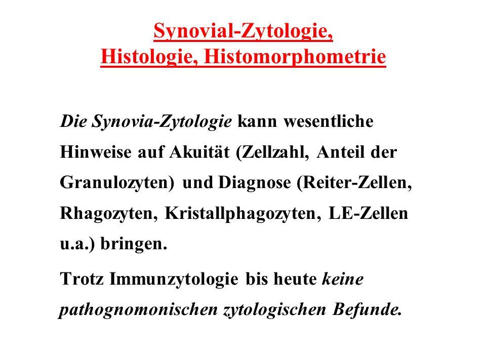 Synovial-Zytologie, Histologie, Histomorphometrie Die Synovia-Zytologie kann wesentliche Hinweise auf Akuität (Zellzahl, Anteil der Granulozyten) und