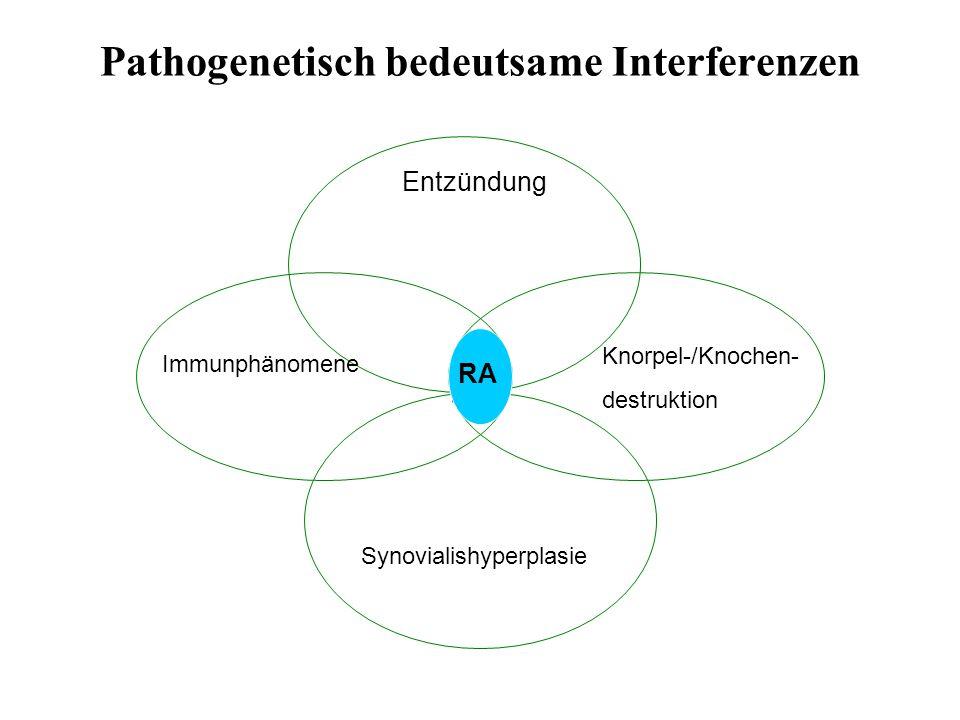 Pathogenetisch bedeutsame Interferenzen Entzündung RA Immunphänomene Knorpel-/Knochen- destruktion Synovialishyperplasie RA