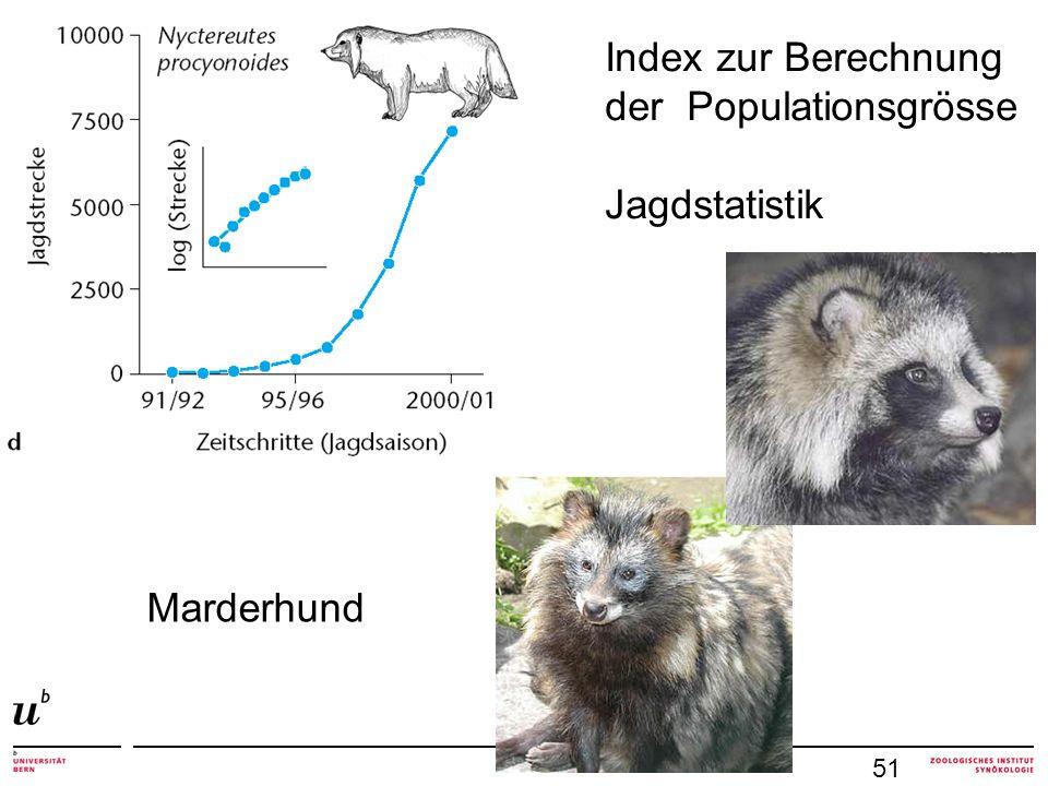 51 Index zur Berechnung der Populationsgrösse Jagdstatistik Marderhund