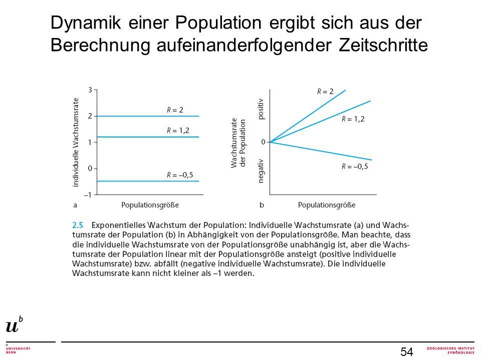 54 Dynamik einer Population ergibt sich aus der Berechnung aufeinanderfolgender Zeitschritte