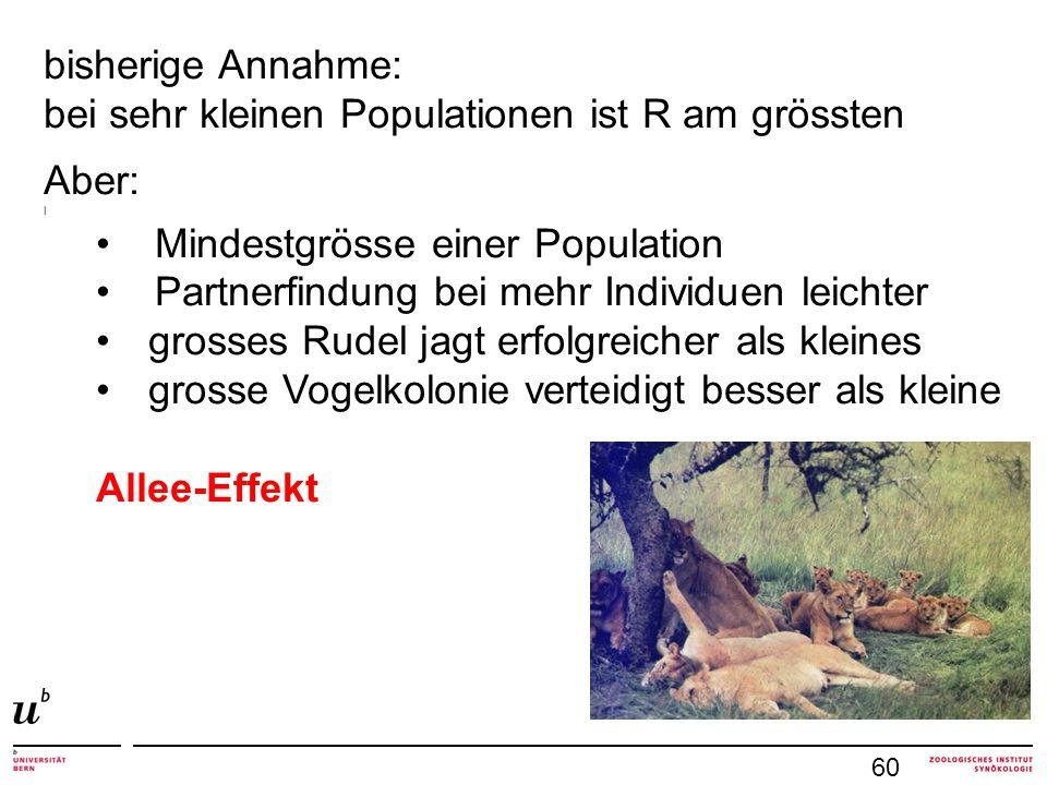 bisherige Annahme: bei sehr kleinen Populationen ist R am grössten Aber: l Mindestgrösse einer Population Partnerfindung bei mehr Individuen leichter