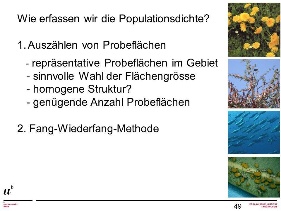 49 Wie erfassen wir die Populationsdichte? 1.Auszählen von Probeflächen - repräsentative Probeflächen im Gebiet - sinnvolle Wahl der Flächengrösse - h