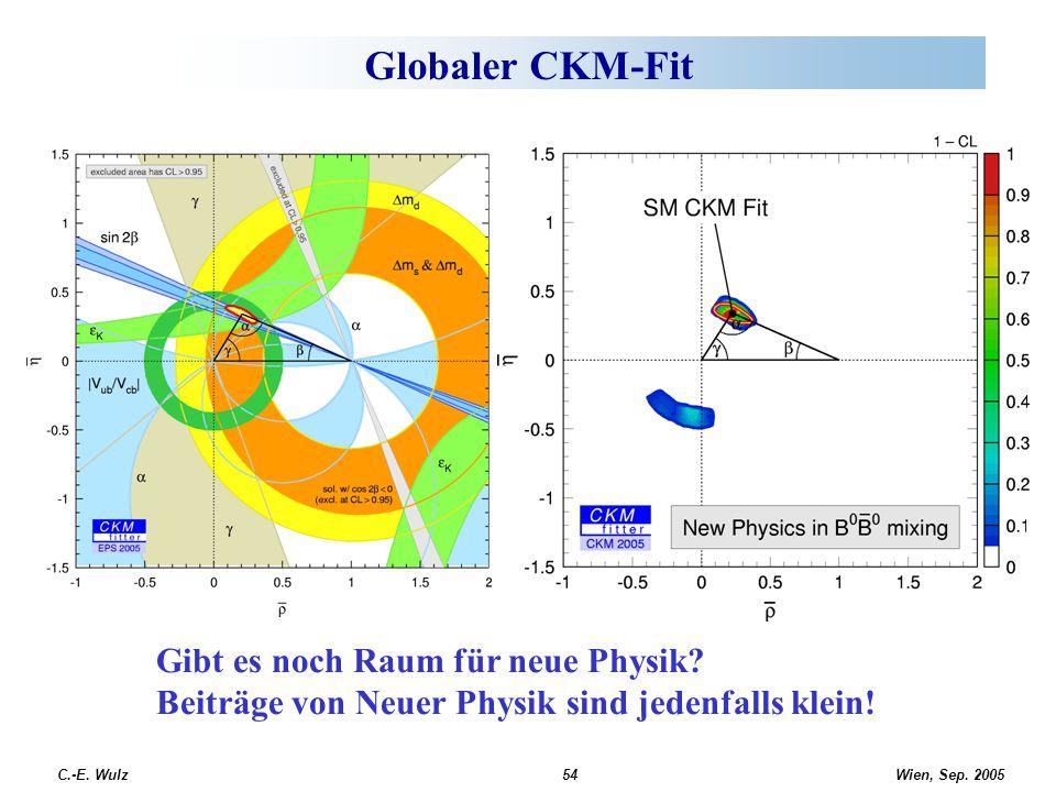 Wien, Sep. 2005 C.-E. Wulz54 Globaler CKM-Fit Gibt es noch Raum für neue Physik? Beiträge von Neuer Physik sind jedenfalls klein!