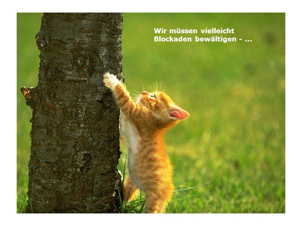 Wir müssen vielleicht Blockaden bewältigen -...
