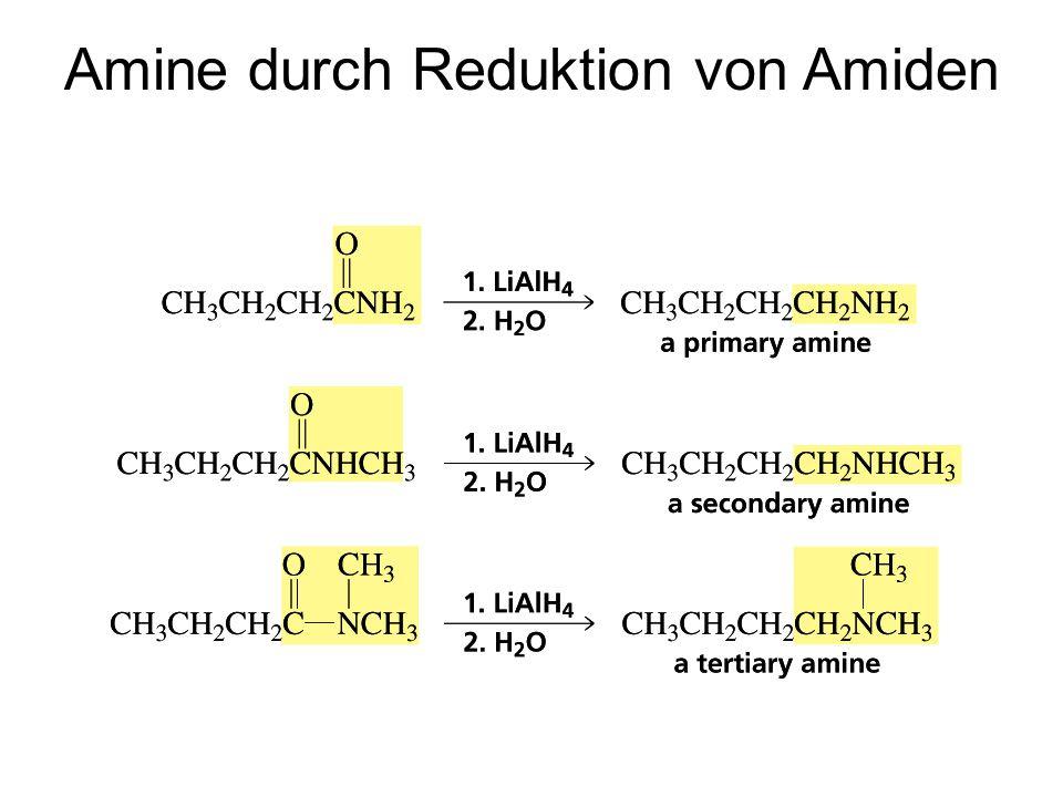 Amine durch Reduktion von Amiden