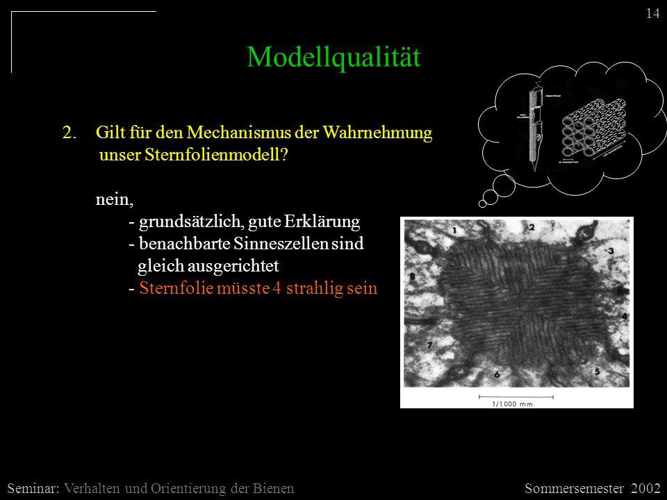 Modellqualität Sommersemester 2002Seminar: Verhalten und Orientierung der Bienen 14 2.Gilt für den Mechanismus der Wahrnehmung unser Sternfolienmodell.