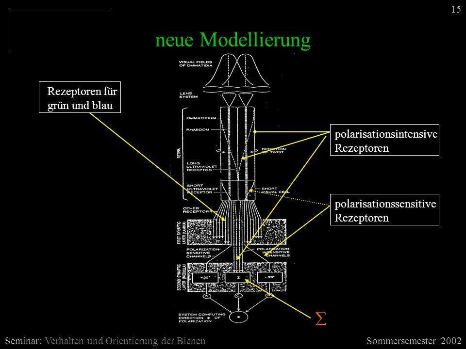 neue Modellierung Sommersemester 2002Seminar: Verhalten und Orientierung der Bienen 15 Rezeptoren für grün und blau polarisationsintensive Rezeptoren  polarisationssensitive Rezeptoren