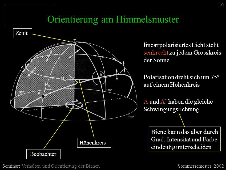 Orientierung am Himmelsmuster Sommersemester 2002Seminar: Verhalten und Orientierung der Bienen 16 Beobachter Zenit linear polarisiertes Licht steht s