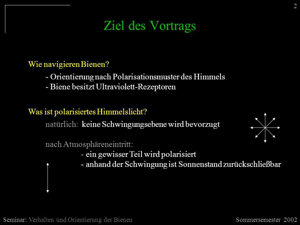 Ziel des Vortrags Sommersemester 2002Seminar: Verhalten und Orientierung der Bienen Wie navigieren Bienen? - Orientierung nach Polarisationsmuster des