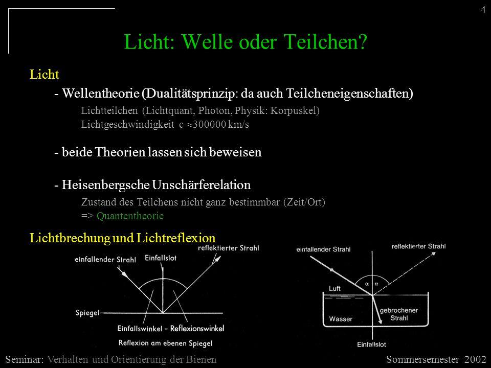 Licht: Welle oder Teilchen? Licht - Wellentheorie (Dualitätsprinzip: da auch Teilcheneigenschaften) Lichtteilchen (Lichtquant, Photon, Physik: Korpusk
