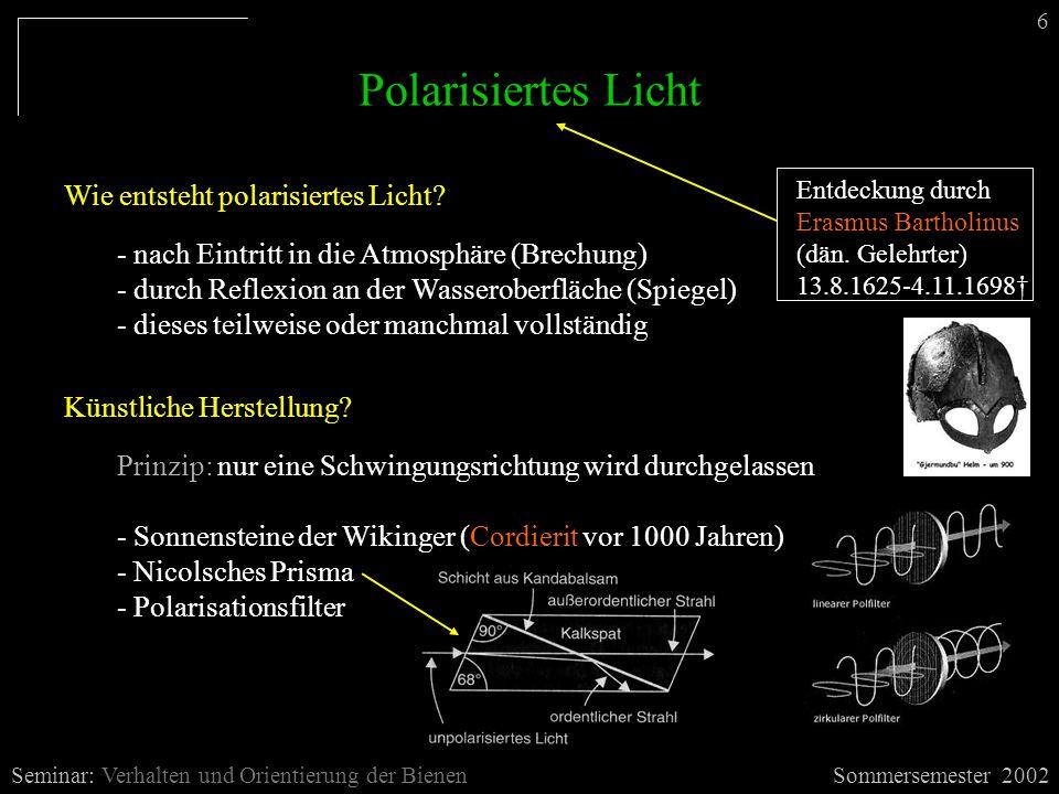 Polarisiertes Licht Sommersemester 2002Seminar: Verhalten und Orientierung der Bienen Wie entsteht polarisiertes Licht.