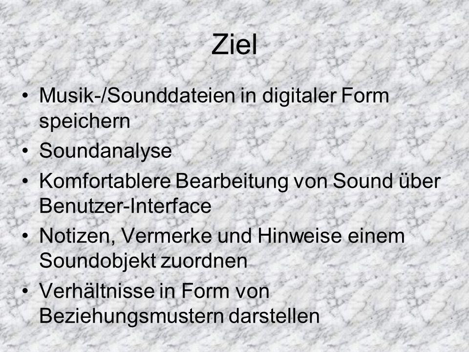 Ziel Musik-/Sounddateien in digitaler Form speichern Soundanalyse Komfortablere Bearbeitung von Sound über Benutzer-Interface Notizen, Vermerke und Hinweise einem Soundobjekt zuordnen Verhältnisse in Form von Beziehungsmustern darstellen